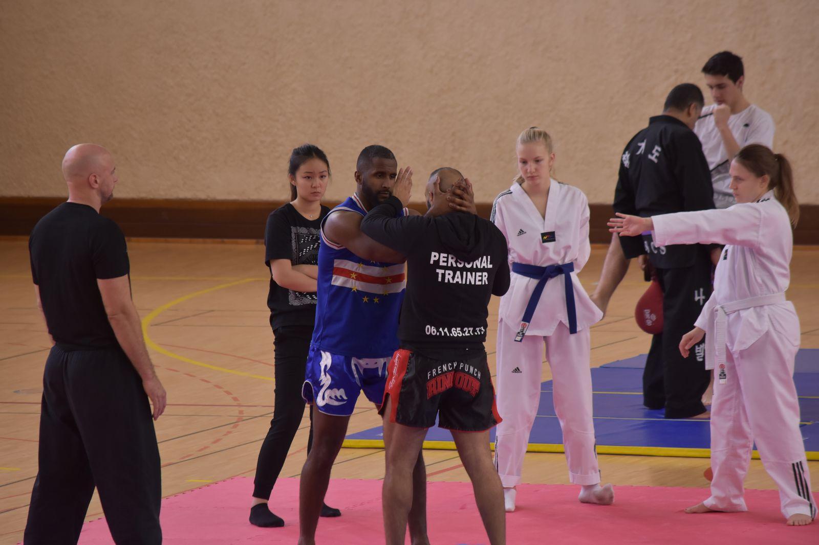 stage inter discipline