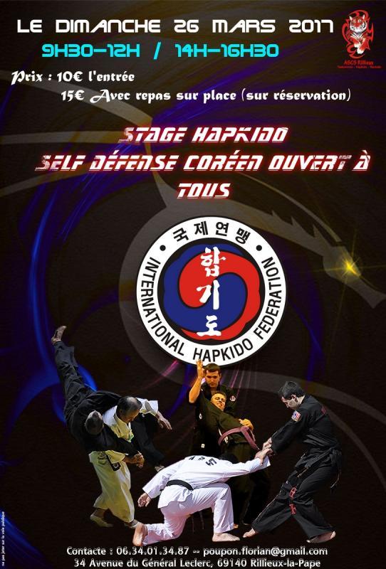 Stage hapkido 26mars 2017 copier